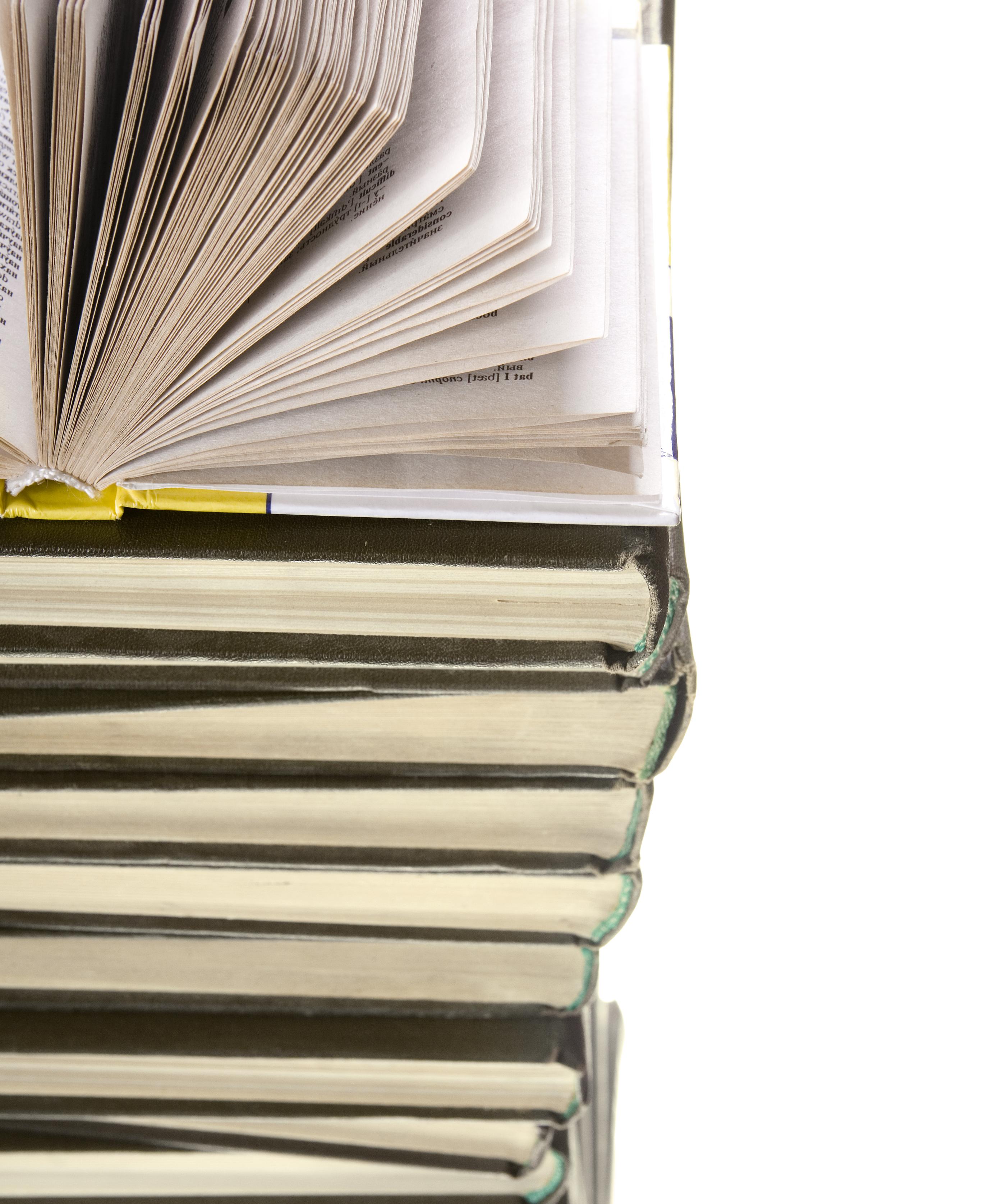 Essay picture books